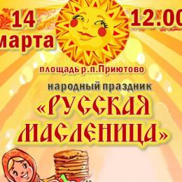 14 МАРТА ||12.00 ||Площадь р.п.Приютово